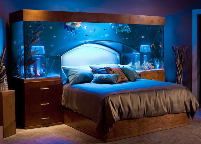 AD-Amazing-Aquariums-3