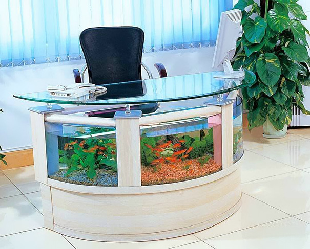 AD-Creative-Aquariums-11